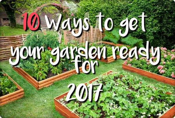 Raised-beds-garden-design-ideas-vegetable-garden