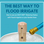 The Best Way to Flood Irrigate: How to use our DEEP DRIP® Watering Stakes with Flood Irrigation or your Garden Hose